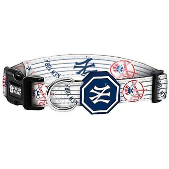 Yankees de New York X Fresh Pawz | Collier