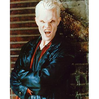 James Marsters Photo - Posing as Vampire Spike from Buffy (8 x 10)