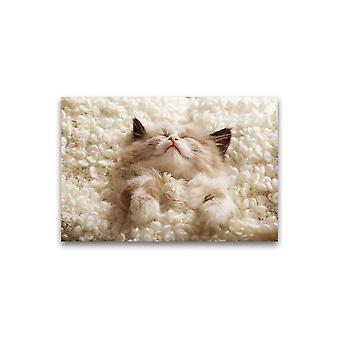 رائعتين النوم دافئ كيتي ملصق -صورة من قبل Shutterstock