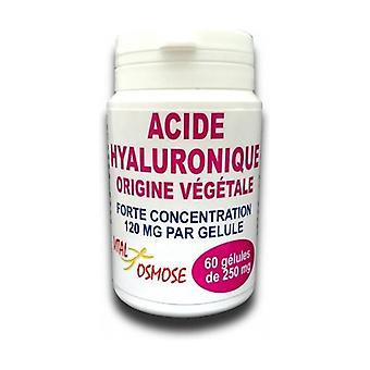 Hyaluronic acid 60 vegetable capsules of 120mg