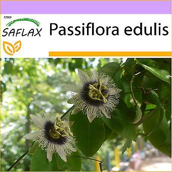 Saflax - 40 Samen - Passionsfrucht - Grenadille - Maracuja - Fruta de la pasién - Passionsfrucht