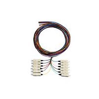 Serveredge Sc Pigtail Om4 2M 12 Fibres 12 Colour