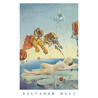 Salvador Dali Dream Caused By A Bee In Flight Poster Poster Print