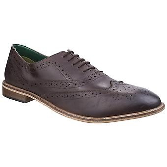Lambretta Mens Scotts Brogue King Lace Shoe Brown