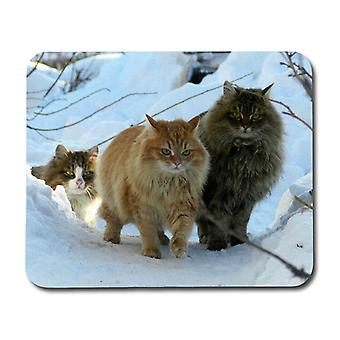 Norwegian Forest Cats Mouse Pad