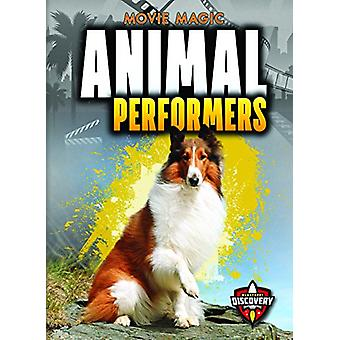 Animal Performers by Sara Green - 9781626178458 Book