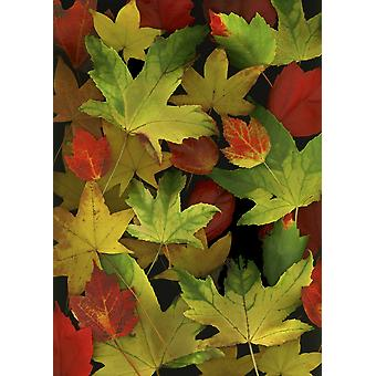 Colorful Autumn Leaves PosterPrint