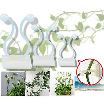 Invisible Wall Rattan Clamp Clip Plant Climbing Vines Fixture Sticky Hook