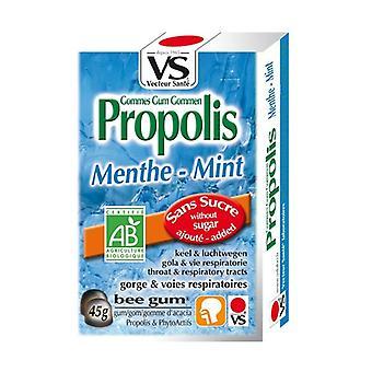 Propolis Mint Gums 45 g (Mint)