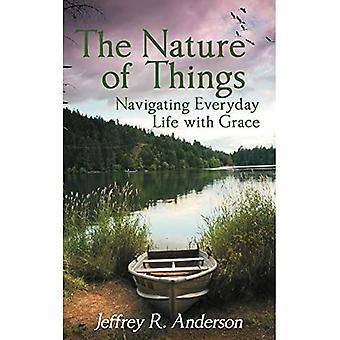 Tingenes natur: Navigering i hverdagen med Grace