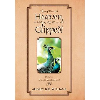Flying Toward Heaven - in Midair - My Wings Are Clipped! - Nonfiction