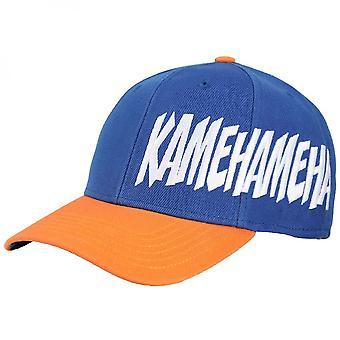 Dragon Ball Z Goku Pre-Curved Bill Snapback Hat