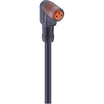 Lumberg Automation 11306-1 RKMW 3-06/2 M Ställdon-Sensor Anslutningsledning, M8-kontakt, Rak Orange