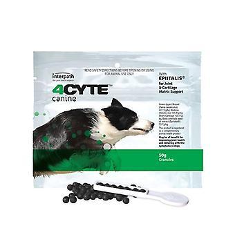 4CYTE Hunde 50g