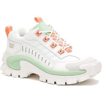 Caterpillar Intruder P724500 universal all year women shoes