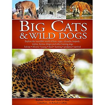 Big Cats and Wild Dogs by Barbara Taylor - 9781844761319 Book
