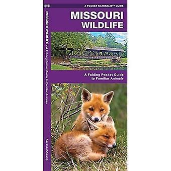 Missouri Wildlife: An Introduction to Familiar Species