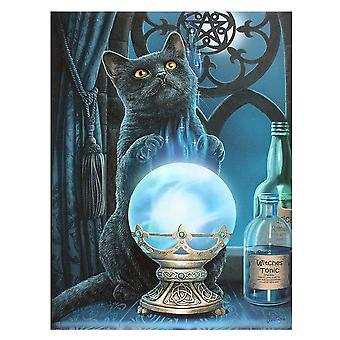 Lisa Parker The Witches Apprentice Canvas