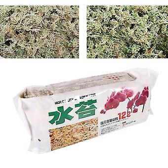 Sphagnum Moss Výživa Organické hnojivo 12l Pre Phalaenopsis Orchidea Kvet