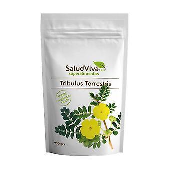 Tribulus Terrestris Eco 250 g