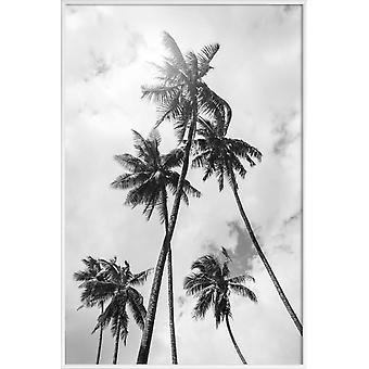 IMPRESSION JUNIQE - Palm Bounty - Palm Trees Poster en gris et noir