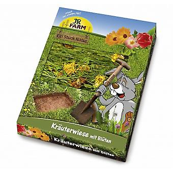 Jr Farm  Herb-Meadow with Blossoms (Small pets , Treats)