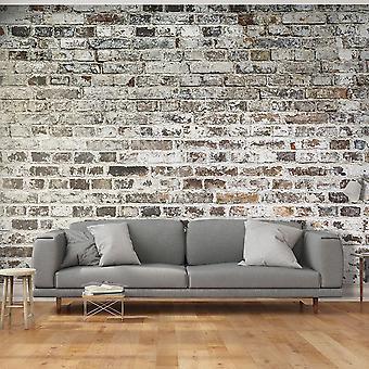 Fototapetti - Old Walls