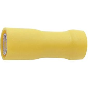 Klauke 750V Blade kärl Connector bredd: 6,3 mm kontakten tjocklek: 0,8 mm 180 ° isolerade gul 1 dator