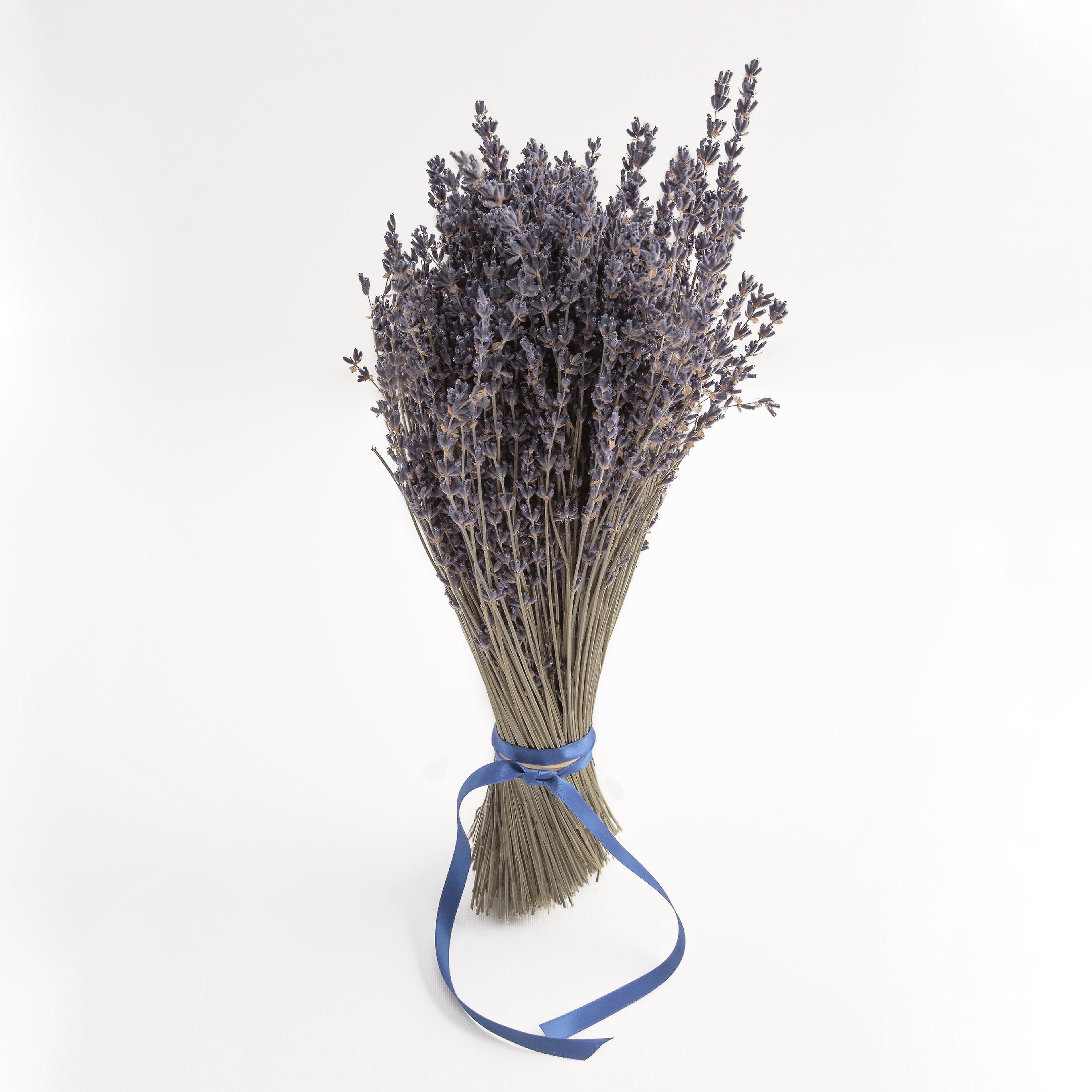 Lavender Lavender bouquet