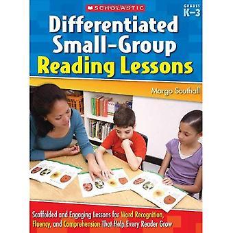 Gedifferentieerde kleine groep lezing lessen