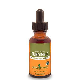 Herb Pharm Turmeric Extract 1 oz