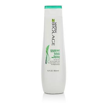 Matrix Biolage Scalpsync Cooling Mint Shampoo (for Oily Hair & Scalp) - 250ml/8.5oz