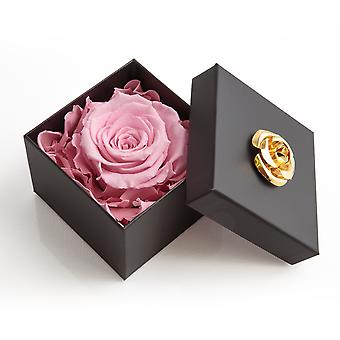 Flower Eternal Rose Preserved Gift Box - Flower