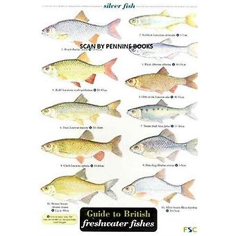Guide to British Freshwater Fishes by Croft & Paul