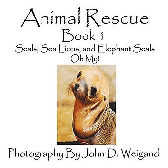 Animal Rescue Book 1 Seals Sea Lions And Elephant Seals Oh My by Weigand & John D