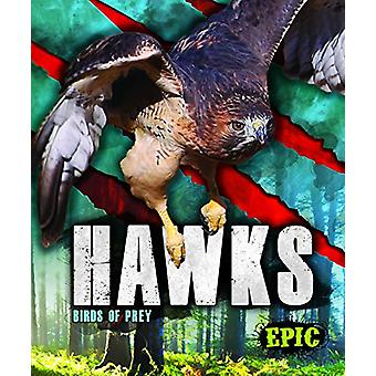 Hawks by Nathan Sommer - 9781626178809 Book