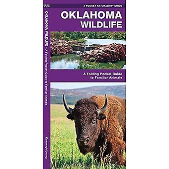 Oklahoma Wildlife (Pocket Naturalist Guides)