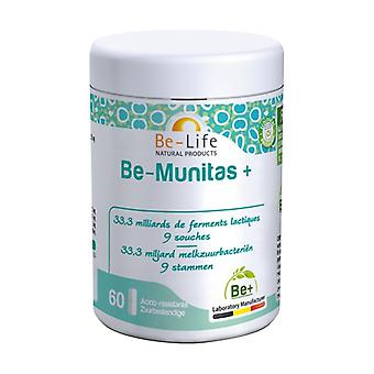 Be-Munitas + None