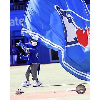 Ace the Toronto Blue Jays Mascot Photo Print