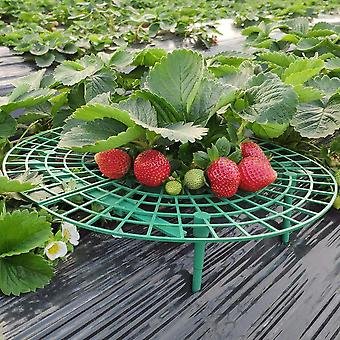 5pcs Strawberry Growing Circle Support Rack