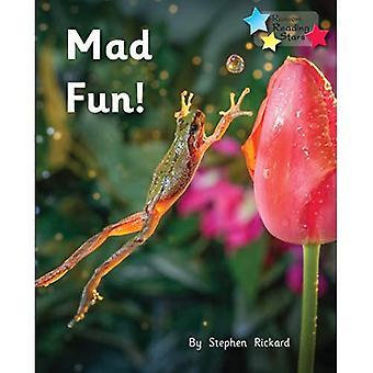 Mad Fun! (Reading Stars)