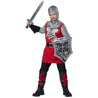Brave Knight Medieval Renaissance Warrior Noble Book Week Boys Costume