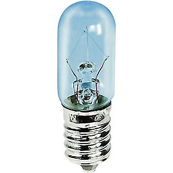 Barthelme 00113005 Mini bulb 30 V 5 W E14 1 pc(s)
