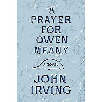 Una preghiera per Owen Meany