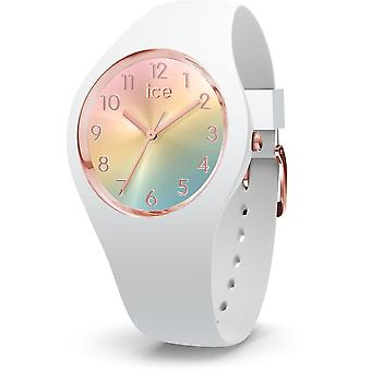 Ice-Watch IW015743 Dames Horloge