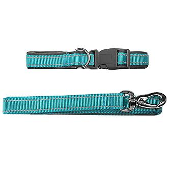 Pet Brands Dogcollar And Leash91 Dog Lead