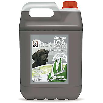 ICA Shampoo PNegro 5Lts Aloe Vera (hunde, Grooming & velbefindende, shampoo)