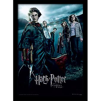 Harry Potter pikari tulen kehystetty levy 30 * 40cm