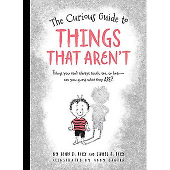 Curious Guide to Things That Arent by John Fixx