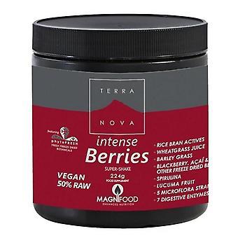 Terranova Intense berries super-Shake pó 224g (T5009)